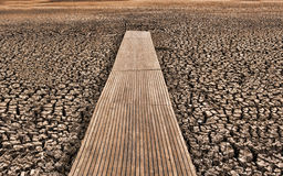 Dry cracked lake bed Stock Photography