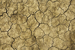 Dry cracked land. Close up on dry cracked land Royalty Free Stock Image