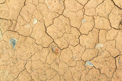 Dry cracked Land Stock Photos