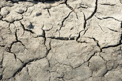 Dry cracked land Royalty Free Stock Photos