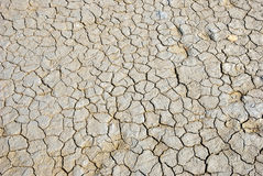 Dry cracked land Stock Images