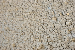 Dry cracked land Stock Photo