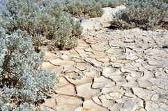 Dry and cracked land at Zabriskie point Royalty Free Stock Images