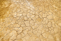 Dry cracked mud flats Stock Images