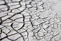 Dry Cracked Mud Texture Royalty Free Stock Photography