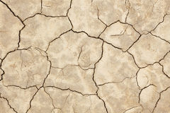 Dry Cracked Mud Texture Stock Photo