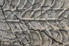 Dry Cracked Mud With Tire Tracks Stock Image
