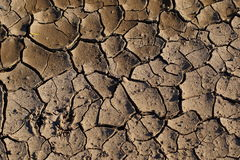 Dry cracked mud royalty free stock photos