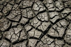 Dry and cracked muddy earth. Closeup of the ground showing extreme dryness and cracking earth Stock Photo