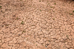 Dry cracked red soil Royalty Free Stock Photos