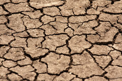 Dry cracked riverbed. Drought in Africa with a dried cracked riverbed Royalty Free Stock Photo