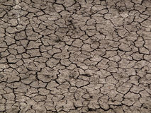Dry cracked riverbed. Drought in Africa with a dried cracked riverbed Royalty Free Stock Image
