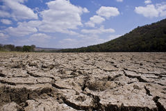 Dry Cracked Riverbed. The dried up banks of the Crocodile river Royalty Free Stock Photography