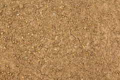 Dry Cracked Seeded Ground Royalty Free Stock Photos