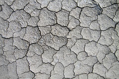 Dry cracked soil. Stock Image
