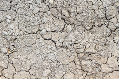 Dry and cracked soil Stock Photography