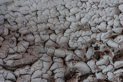 Dry Cracked Soil Background Royalty Free Stock Photo