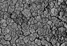 Dry cracked soil stock photo