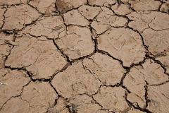 dry cracked soil Royalty Free Stock Image