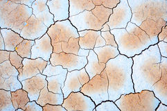 Dry cracked soil closeup Stock Photo