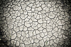 Dry cracked soil dirt Stock Photography