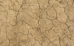 Dry and cracked soil Stock Images