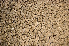 Dry cracked soil during drought Royalty Free Stock Image