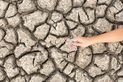 Dry and cracked soil. Stock Photo