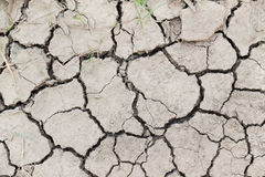 Dry and cracked soil ground Royalty Free Stock Images