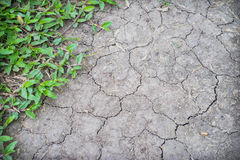 Dry cracked soil Royalty Free Stock Photos