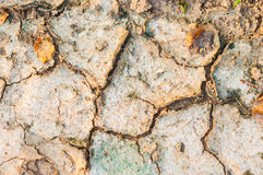 Dry cracked soil-rough grunge background Stock Photo