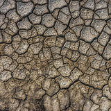 Dry cracked soil Stock Photography