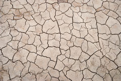 Dry cracked soil texture Royalty Free Stock Photo