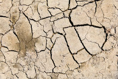 Dry and cracked soil Stock Photo