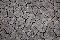 Dry and cracked soild Royalty Free Stock Photography