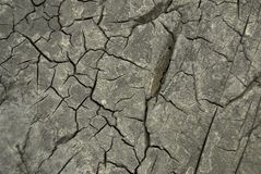 Dry cracked surface Royalty Free Stock Photo