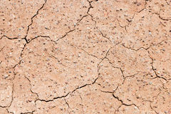 Dry cracked surface of earth. Texture royalty free stock photo