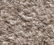 Dry cracked wilderness texture Stock Photography