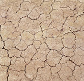 Dry cracks in dried out soil Royalty Free Stock Image