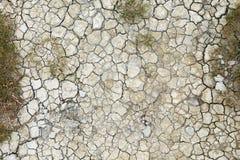 Dry cracks Stock Image