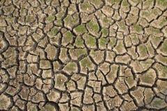 Dry cracks Stock Photo