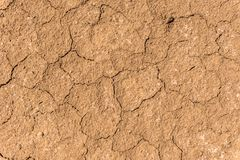 Dry cracks on a sandy-silty brown soil in North Germany. royalty free stock photo