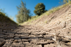 Dry creek bed Royalty Free Stock Images