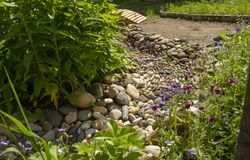 Free Dry Creek In The Garden Of Stones. Grass And Flowers Grow Along The Bank Of The Brook Stock Images - 153170654