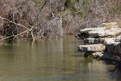 Dry creek with water Stock Image