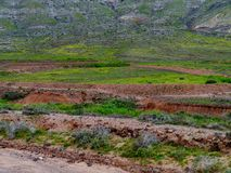 Dry creeks and river beds near La Oliva on Fuerteventura Stock Photos