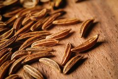 Dry cumin seeds or caraway. Extreme macro photography royalty free stock photography