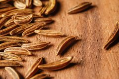 Dry cumin seeds or caraway. Extreme macro photography stock image