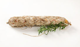 Dry cured sausage Stock Images