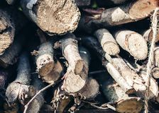 Dry cut logs firewood, wood. For home heating royalty free stock photo